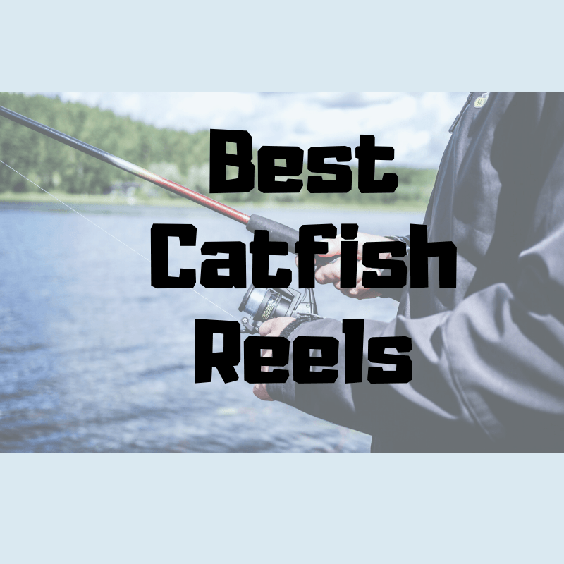 Best Catfish Reels 2020