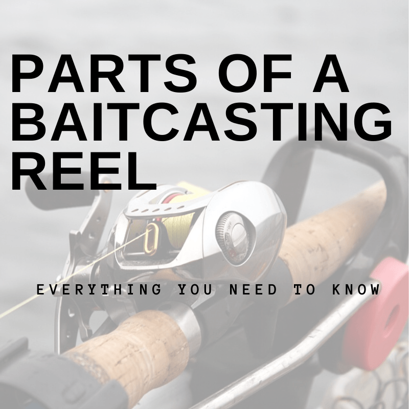 Parts of a Baitcasting Reel: Everything You Need to Know