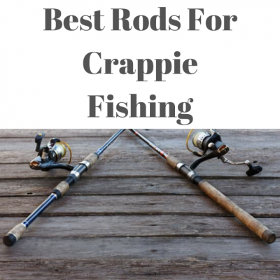 Best Rods For Crappie Fishing